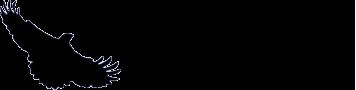NightHawk Bedwetting Logo